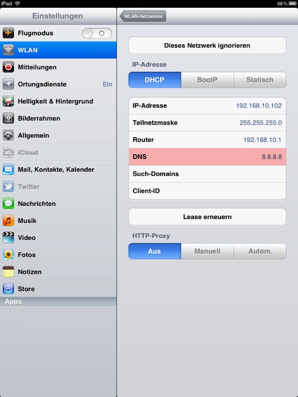 iPad DNS-Einstellungen