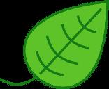 Green IT im eigenen Zuhause